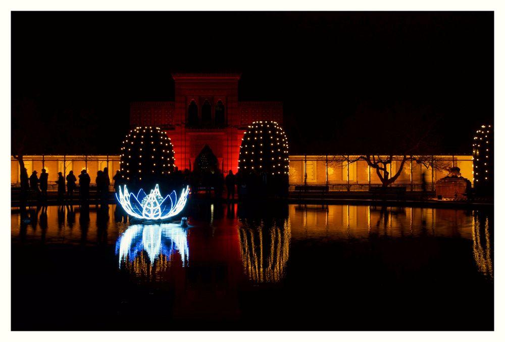 - Eine Nacht im Advent -