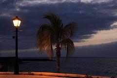 Eine Palme, Laterne und das weite Meer