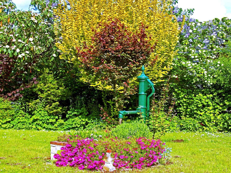 eine pumpe im garten foto & bild | natur, landschaft, pumpe bilder