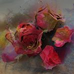 eine Rose für dich, eine Rose...