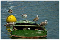 Eine Seefahrt die ist lustig......