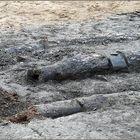 Eine sehr alte, hölzerne Wasserleitung