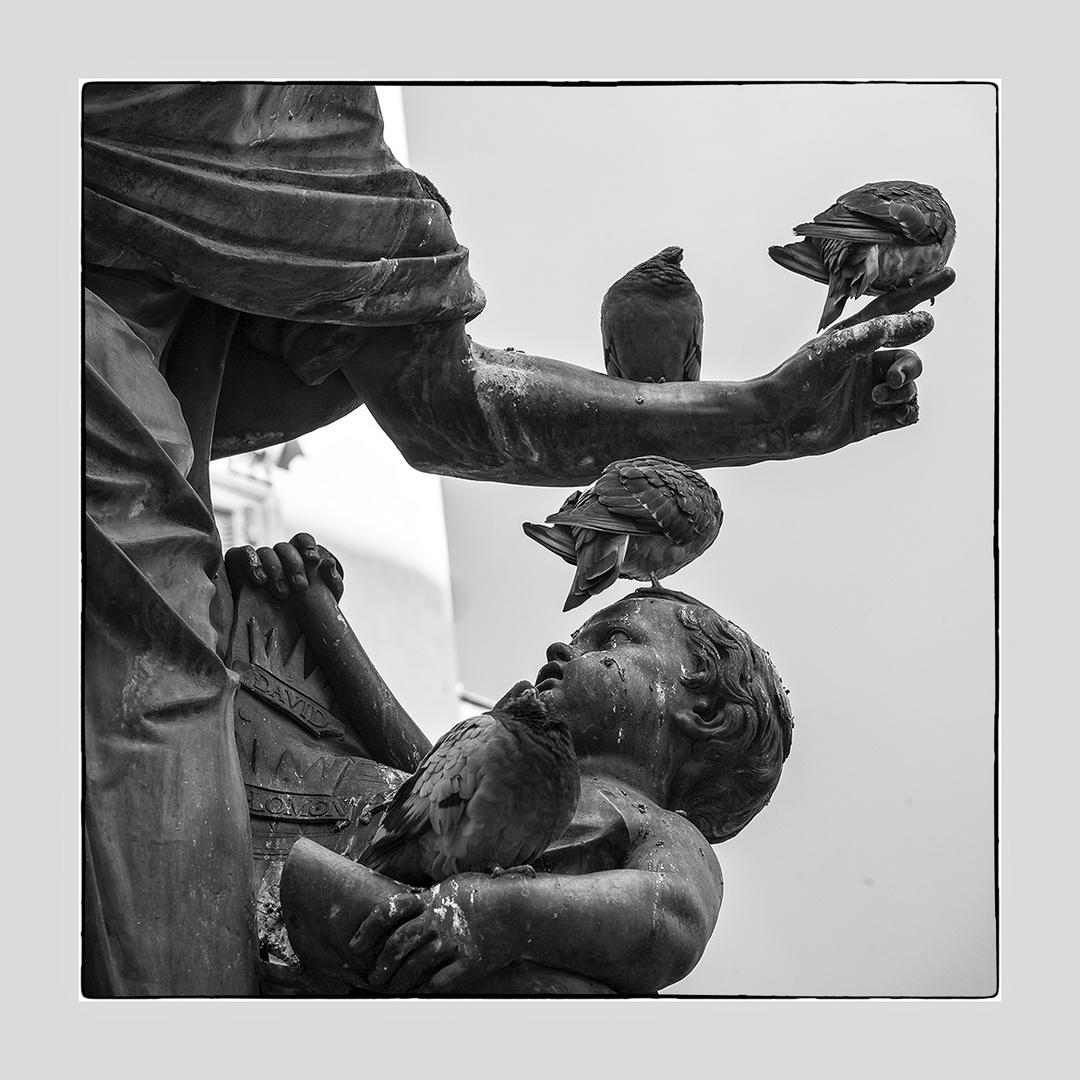 """Eine Statue hat ein """"beschissenes"""" Leben ;o)))"""