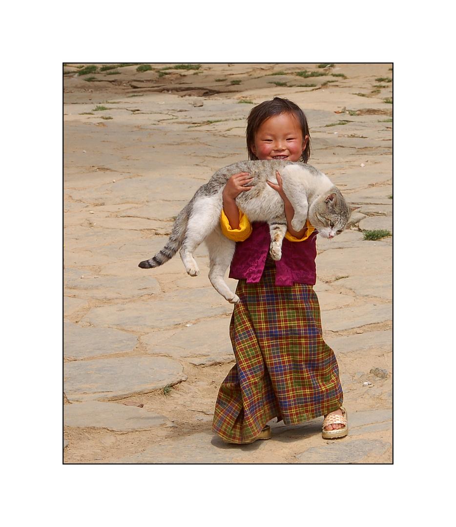 Eine Umarmung Foto & Bild   world, asien, katze Bilder