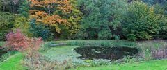 Eine weitere Bearbeitung des rechten See`s südlich von Liebstadt...
