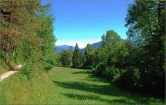 Eine Wiese am Crestasee # Una pradera en el lago Cresta
