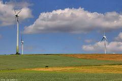 Eine windige Gegend