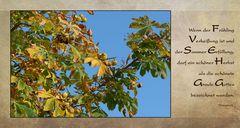 Eine wunderschöne Herbstwoche...