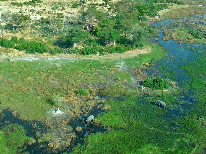 Einen Flug übers Okavango Delta...