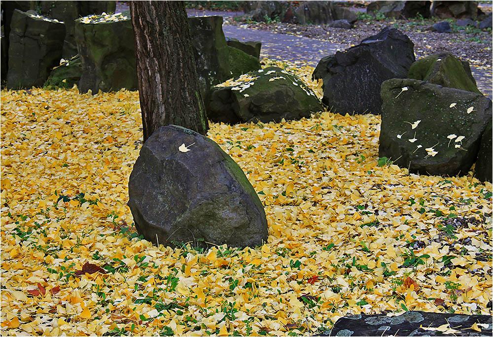Einen goldenen Teppich....