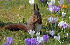 Einen guten Start ins erste Frühlingswochenende