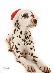 Einen schönen 4. Advent Euch allen.