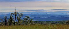 Einer der schönsten Blicke in meinem Umfeld in die  Berge...