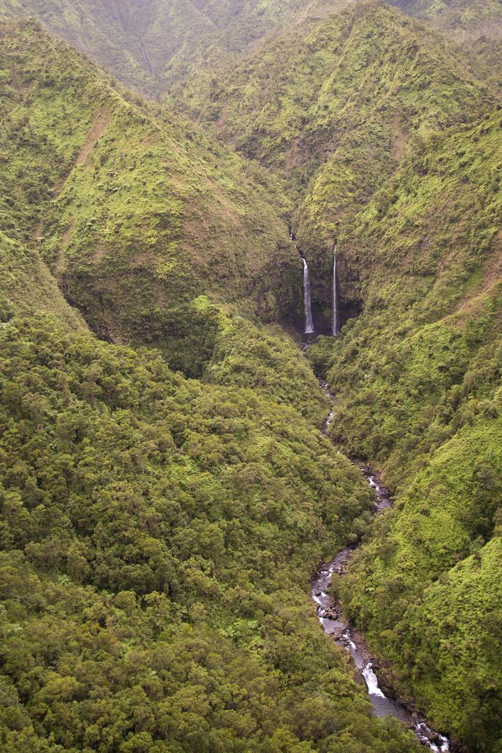 Einer der vielen Wasserfälle im Halelea Forest Reserve