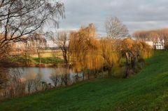 Einer der wenigen schönen Dezembertage (13.12.07 in Dormagen)