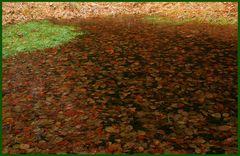 Einfach Blätter