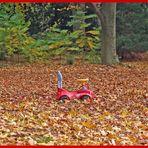 Einfach im Blätterwald zurück gelassen