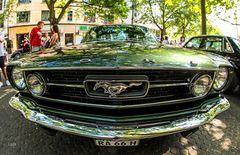 Einfach Mustang