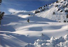 Einfach schön, so im Schnee zu wandeln...