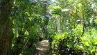 Einfach wunderbare Gartenanlage