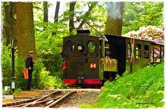 Einfahrt des Zuges der Waldeisenbahn  ..