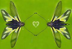 Einfühlsame Begegnung: links ein Weibchen und rechts ein Männchen! - Une rencontre coeur à coeur!