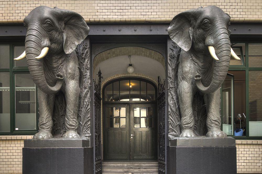 Eingang Afrikahaus