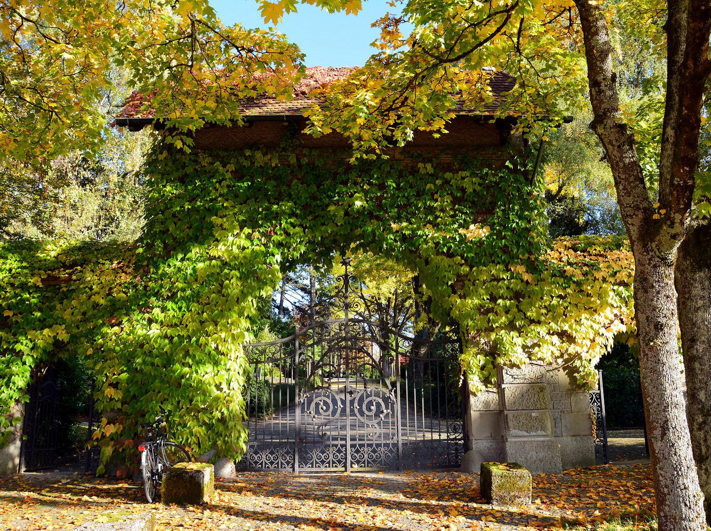 Eingang Friedhof Enzenbühl Zürich