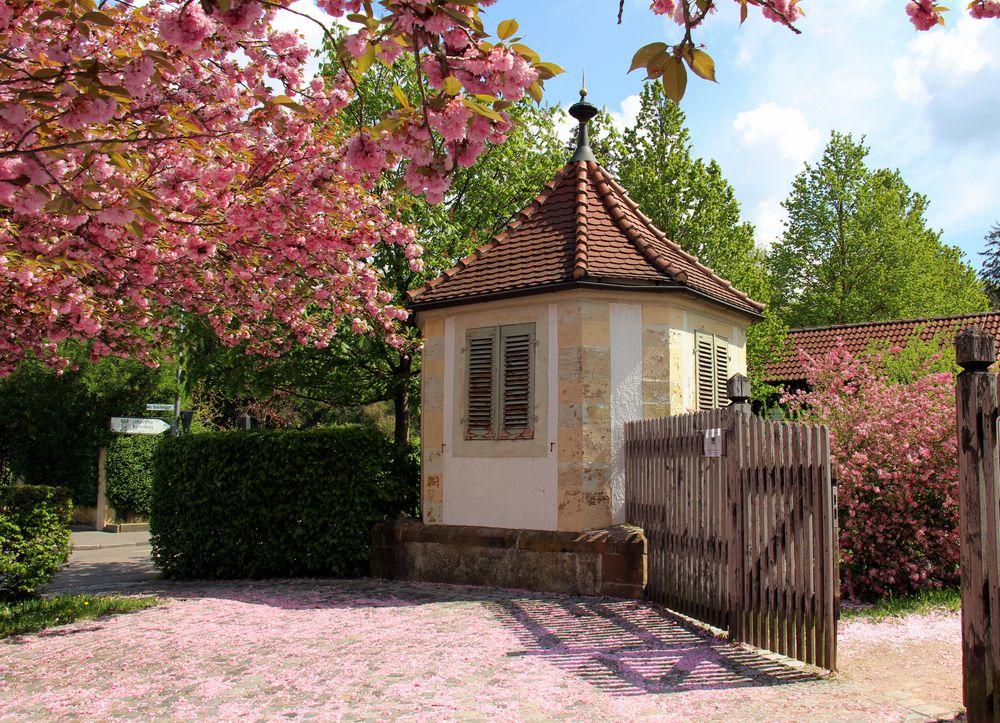 Eingang in den BOG Heilbronn