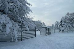 Eingang ins Wintermärchen