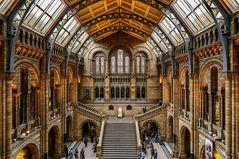 Eingangshalle zum Natural History Museum