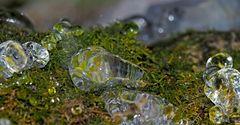 Eingefrorene Tropfen auf dem Moosboden! - Gouttes gelées sur la mousse dans la forêt.