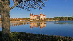 Eingerahmt und mit Spiegelung präsentiert sich hier Schloss Moritzburg...