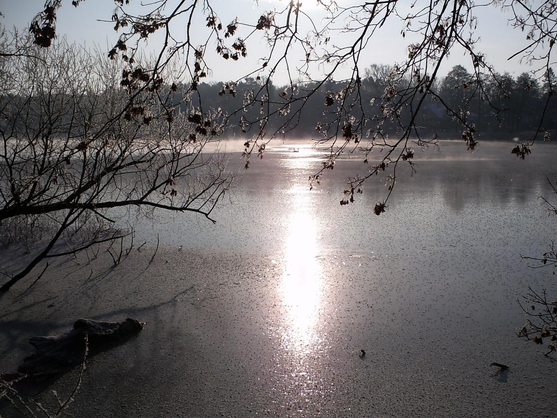 eingeschlossen im Eis