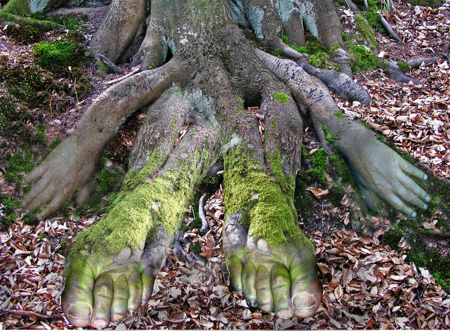 Einheit von Mensch und Natur