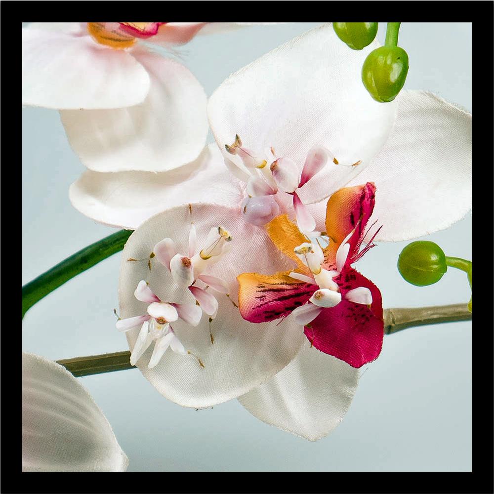 einige Nymphen auf einer künstlichen Orchideenblüte