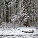 Einladung im Schnee,  invitación en la nieve,  invitation in the snow