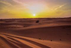 Einmal allein in der Wüste