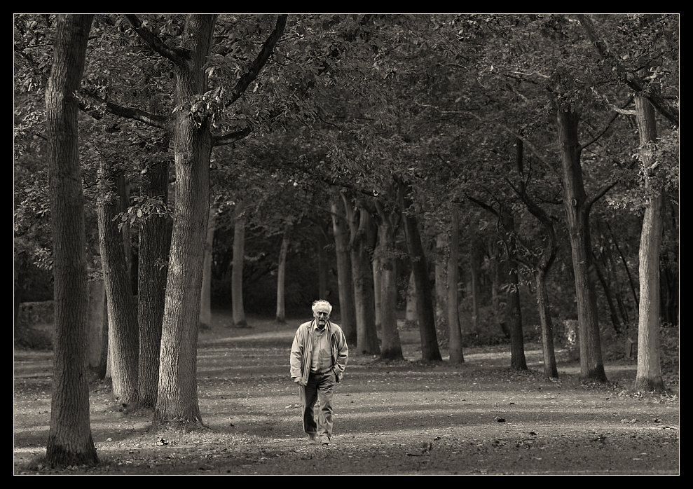 ... einsam im Herbst.