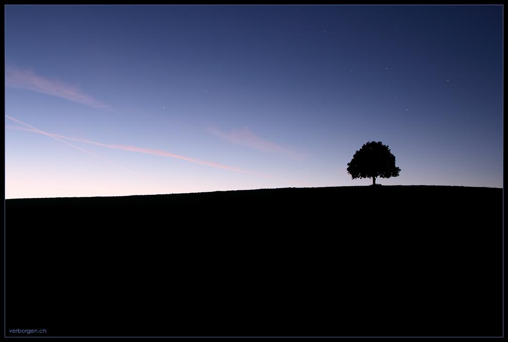 Einsam in die Nacht...