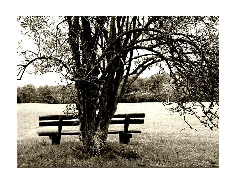 Einsam und verlassen....
