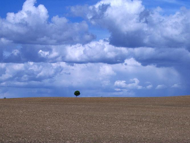 Einsam und verlassen