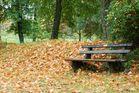 Einsame Bank im Herbst