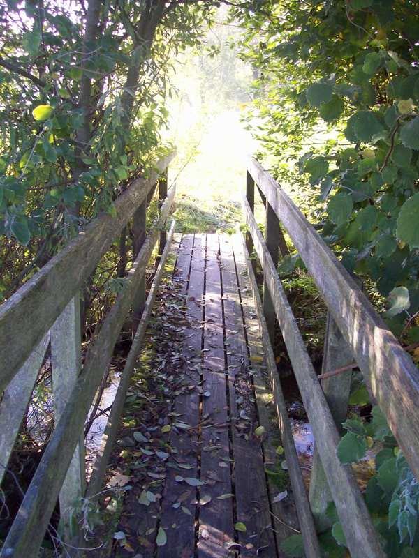 Einsame Brücke im Herbst