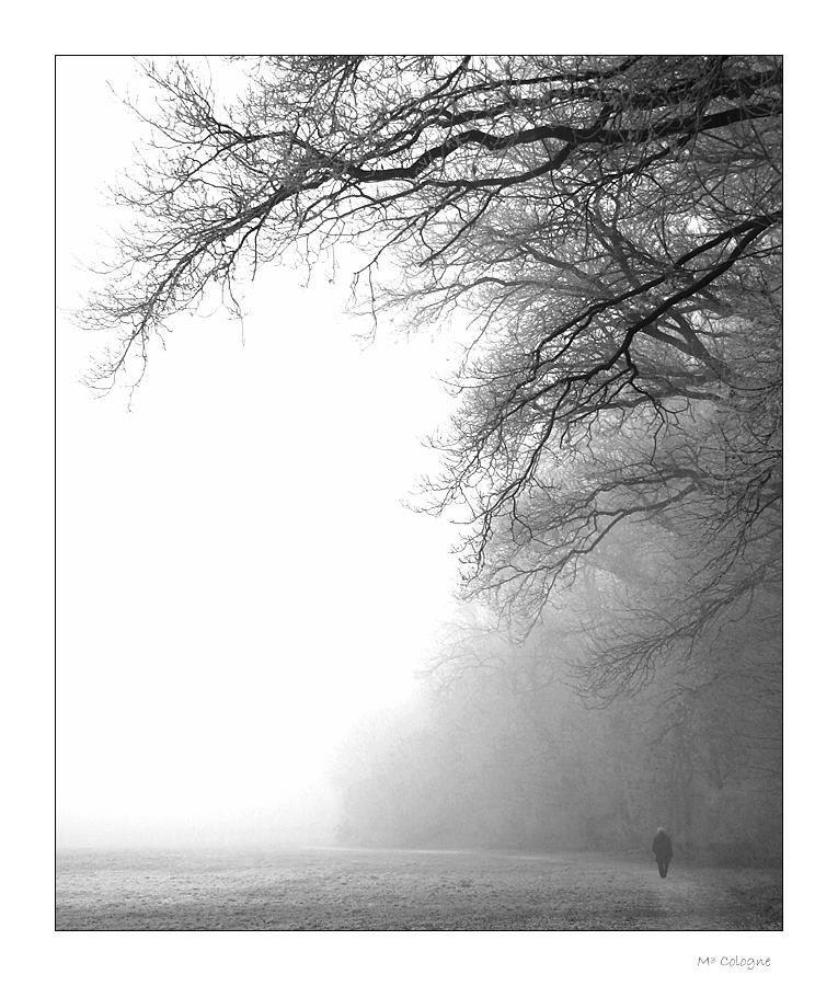 Einsame Seele