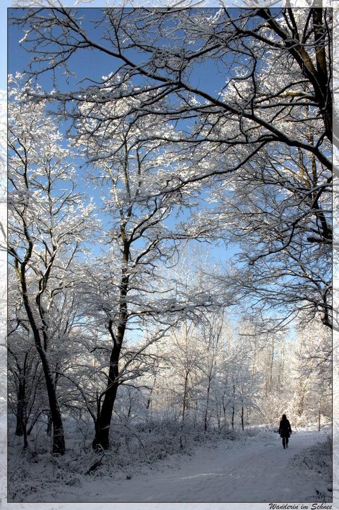 einsame Wanderin im Schnee