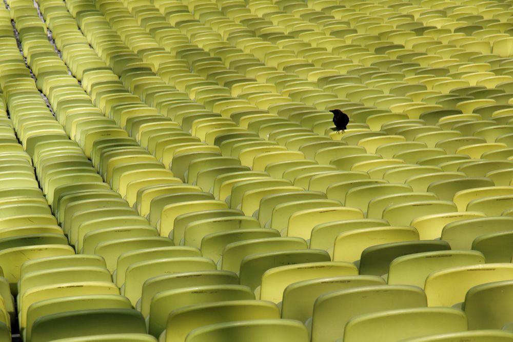 Einsamer Fan