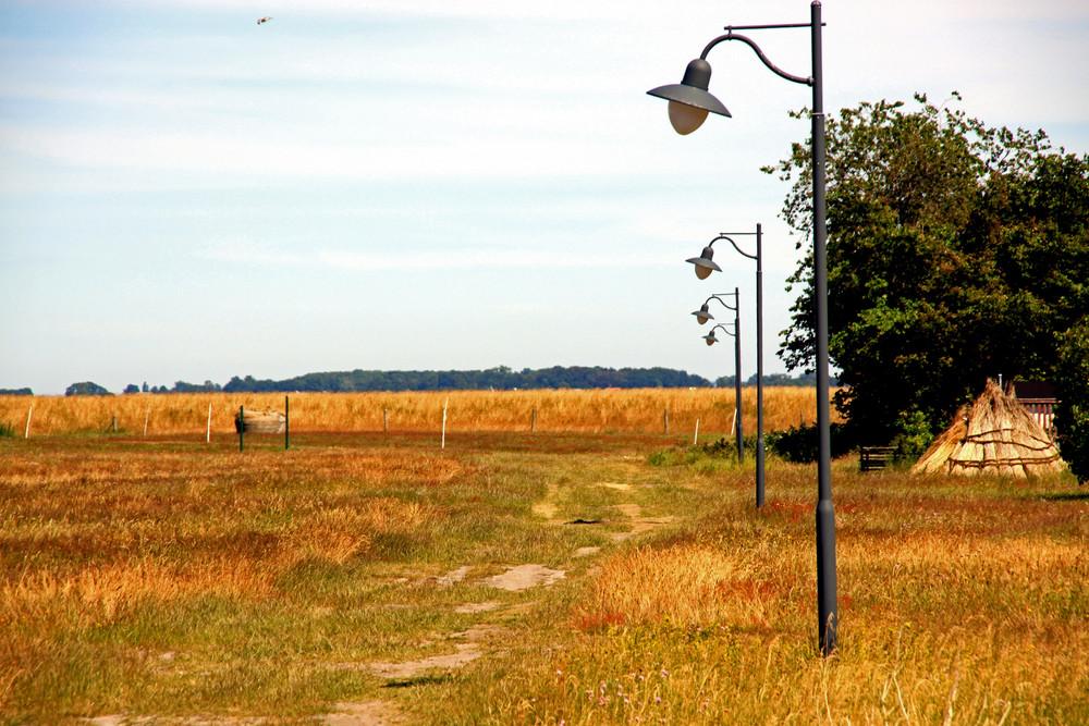 Einsamer Feldweg auf Hiddensee