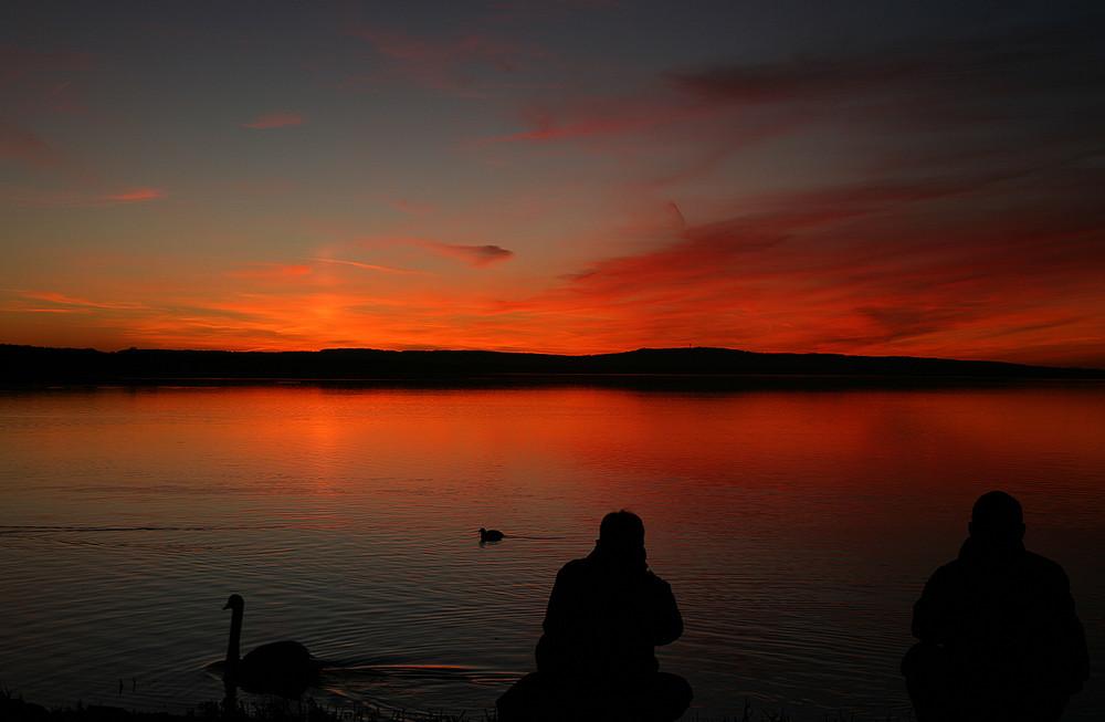 einsamer Fotograf am Steinhuder Meer #2