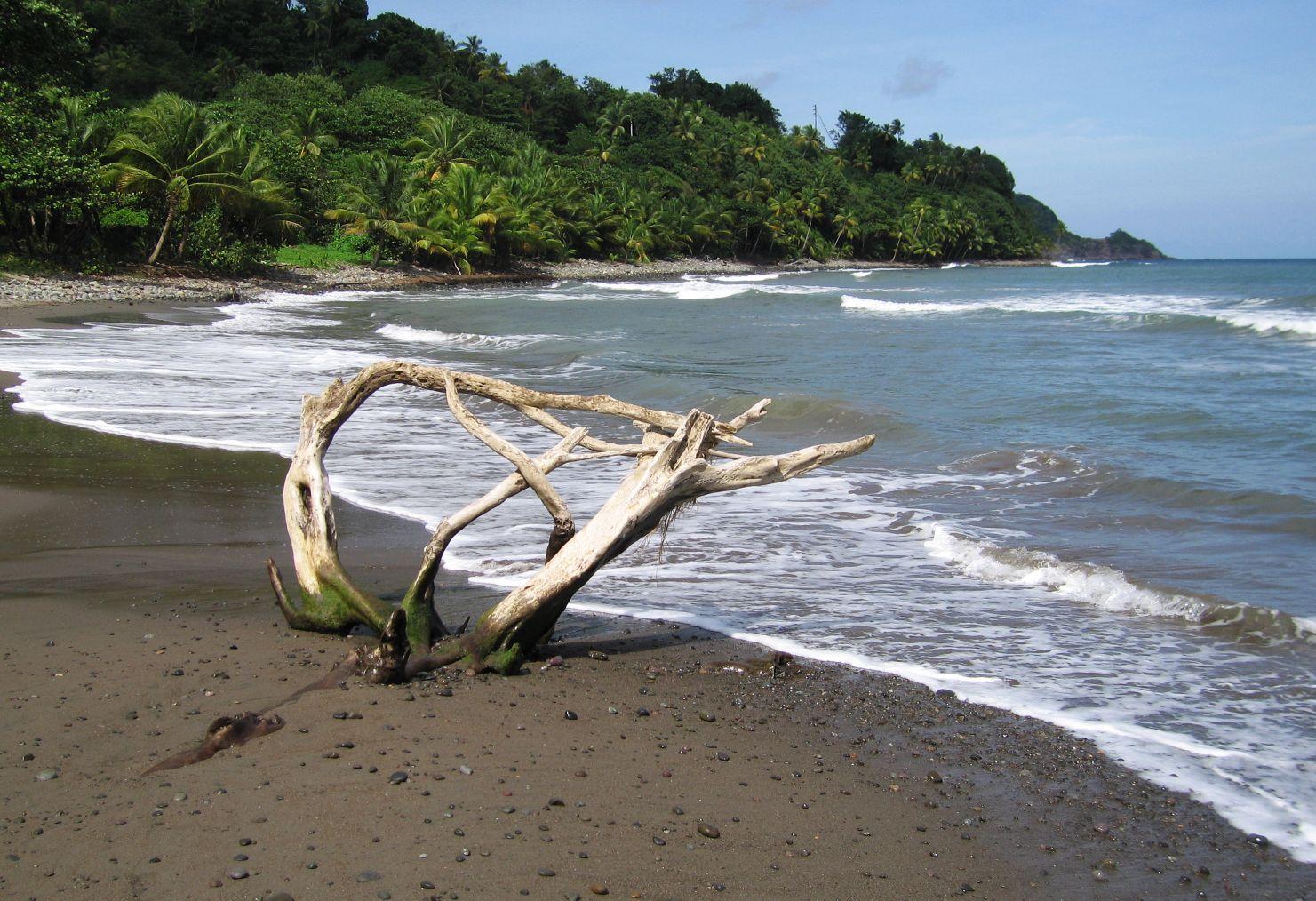 einsamer Strand auf Dominica